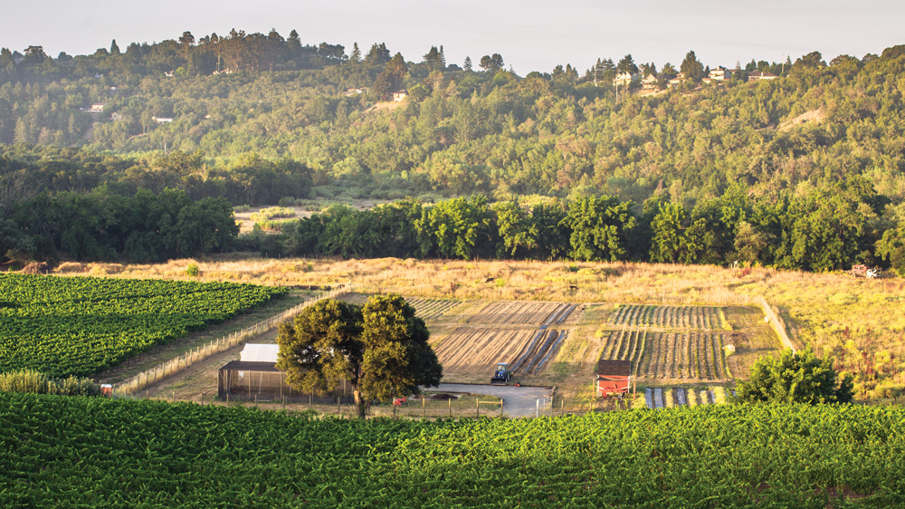 Katina Connaughton manages the 5-acre farm in Healdsburg that supplies produce for the restaurant and inn.