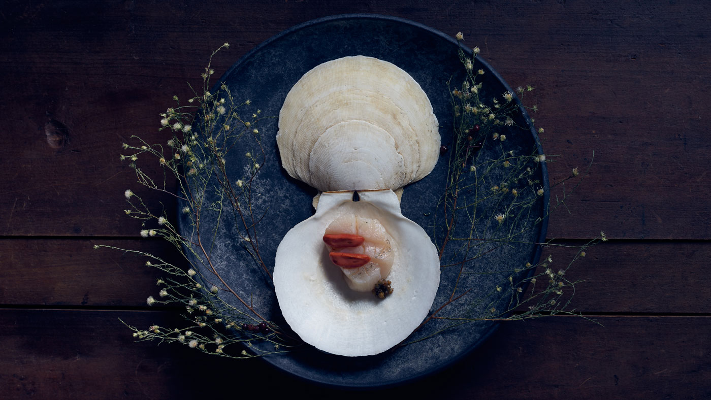 Razor clams with sauce