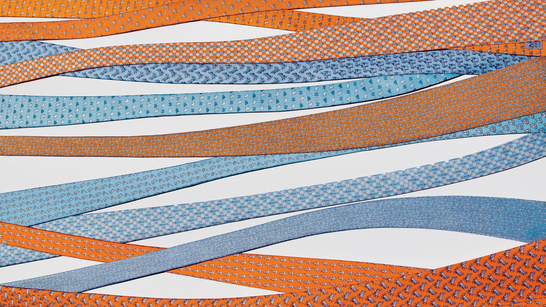Hermès Tie Society