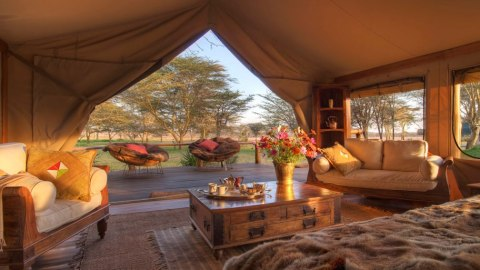 Scenic Air Safaris' new nine-day Endangered Species private-jet safari tent view