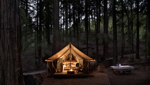 Tent lit up at night in a forest