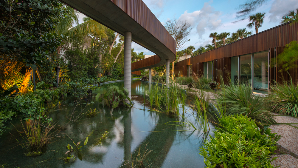 Miami Jungle home with lagoon with vegetation
