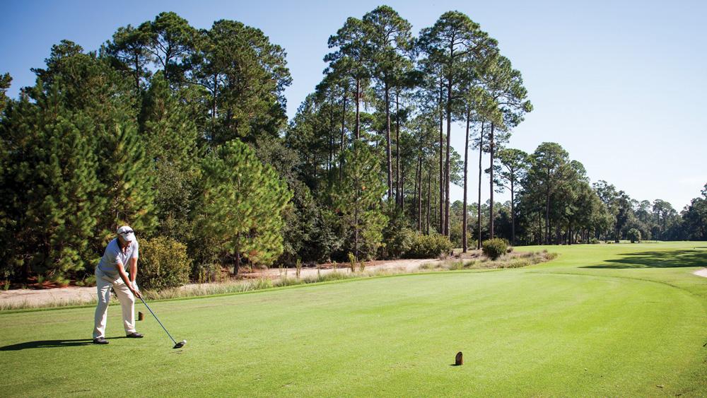 Palmetto Bluff Montage resort golf course