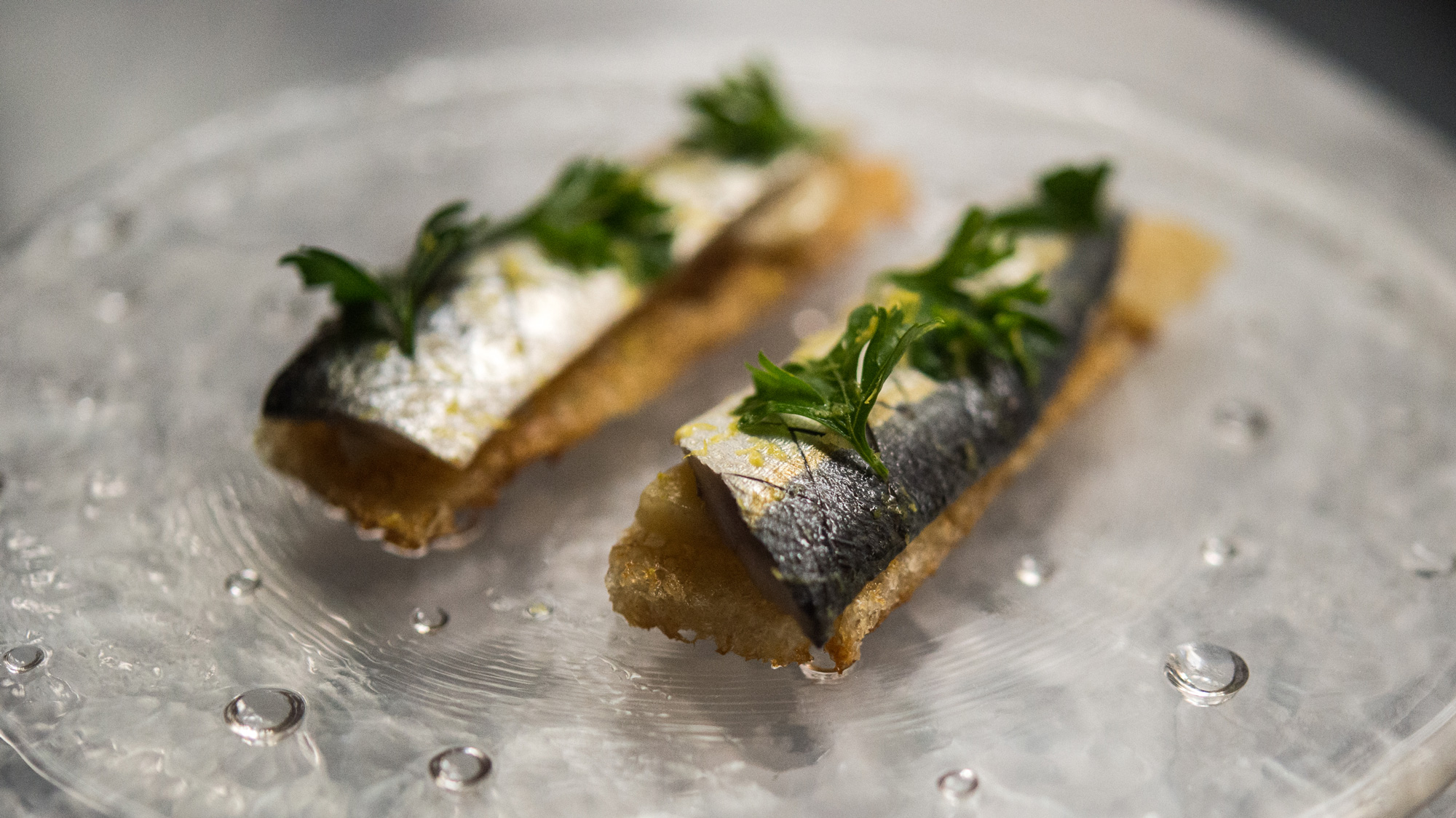 Portuguese sardine on toast with bone marrow and maple