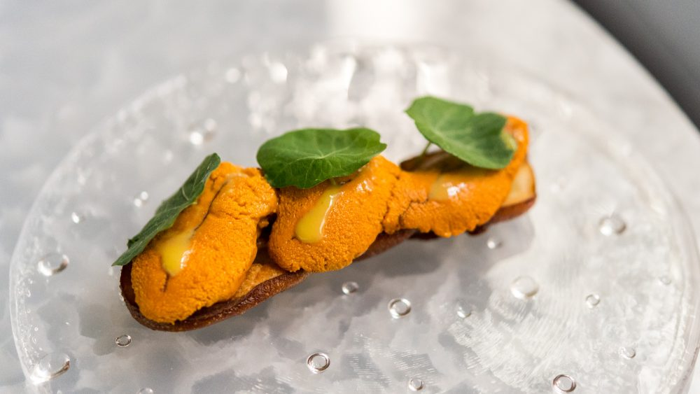 uni, sea urchin on toast with apple and spicy mustard