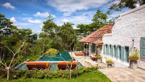 villa backyard with infinity pool and jungle view