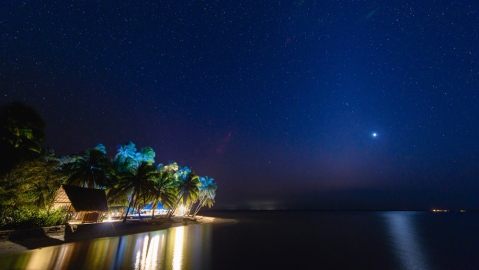 Private island in Caribbean at night with stars and palm trees