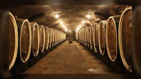 corridor of wine barrels