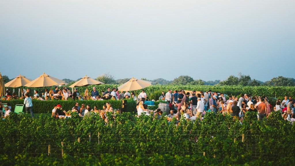 The winery garden at Wölffer Estate
