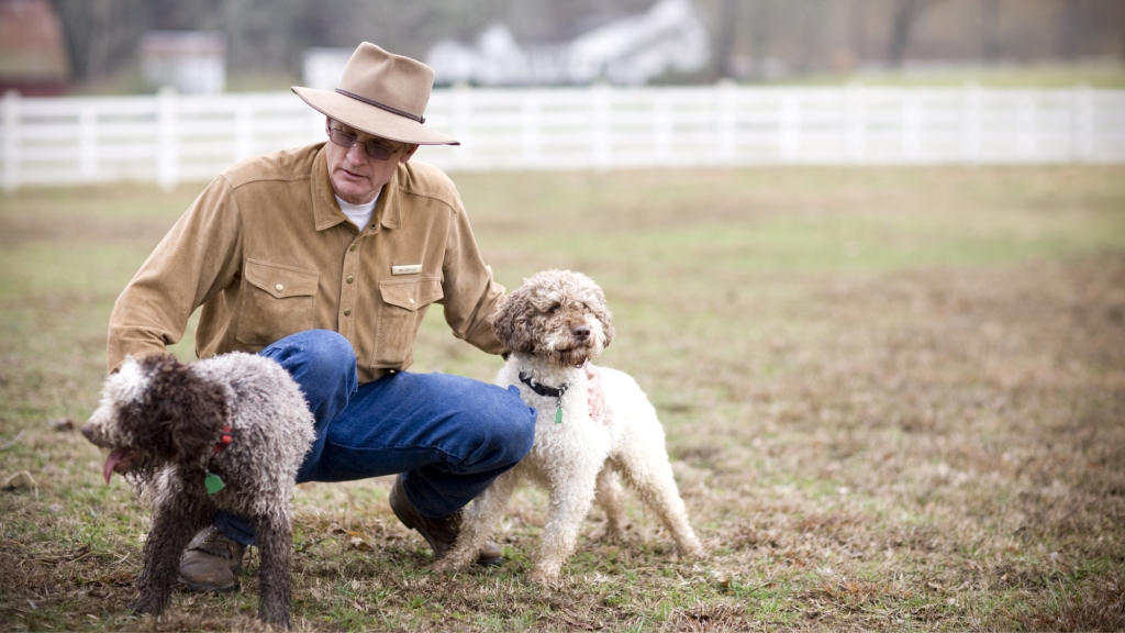 truffle hunting dog trainer