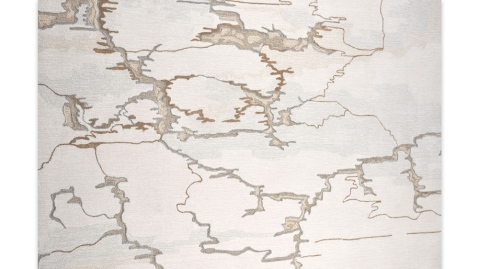 Cambrian rug