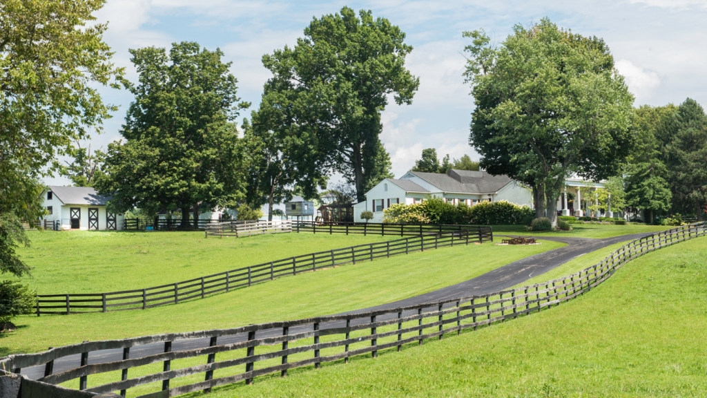 Johnny Depp's Kentucky Farm