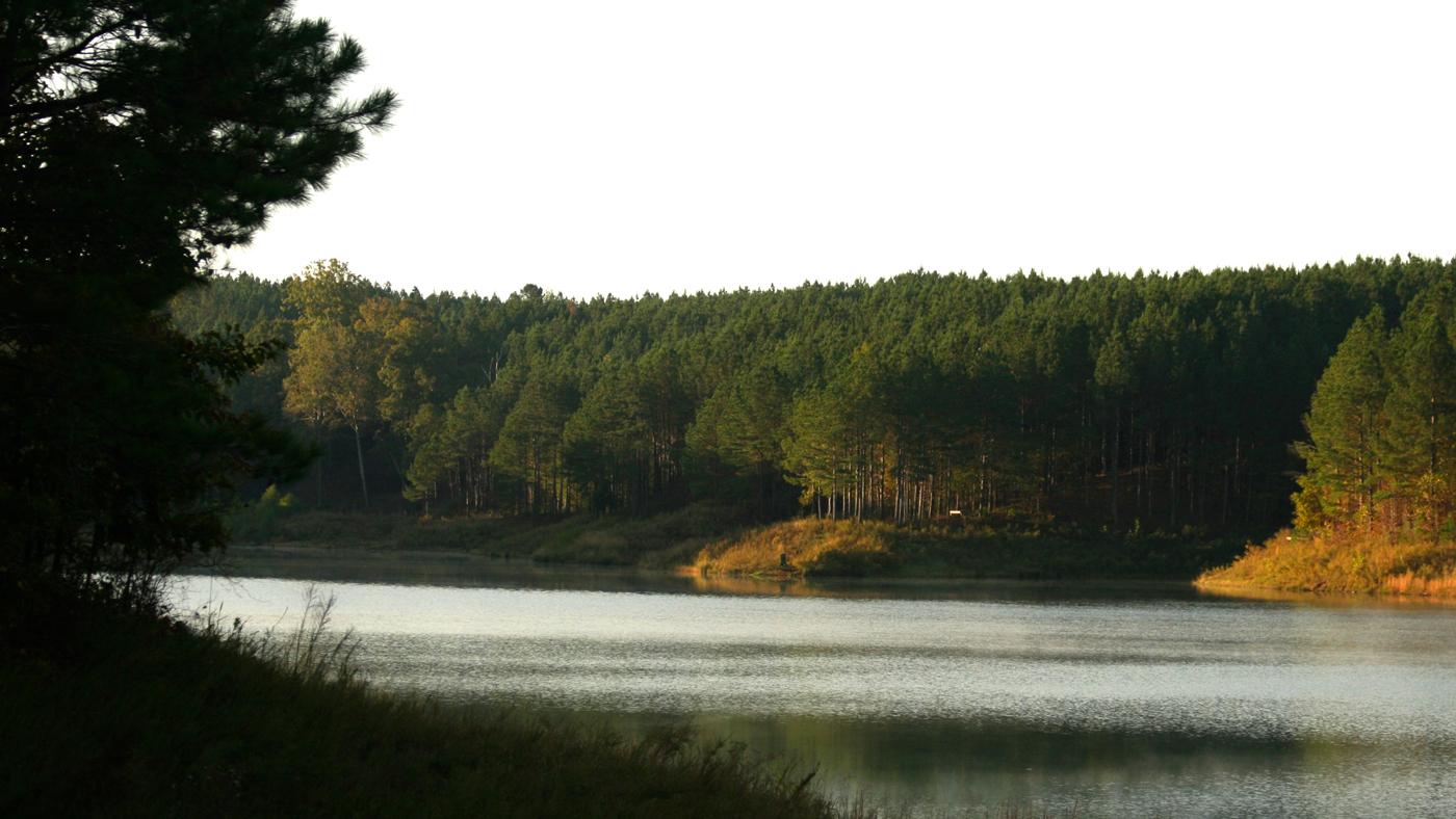land, water