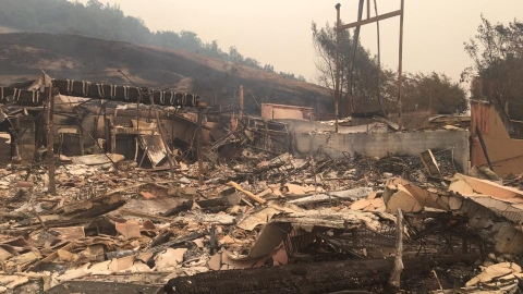 wine country wildfire damage