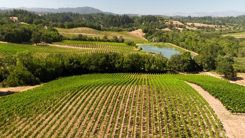 Farmhouse Inn Sonoma Valley