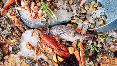 crab lobster shrimp shellfish