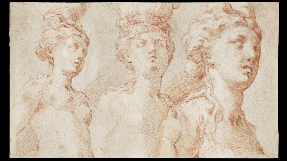 il Parmigianino figure studies