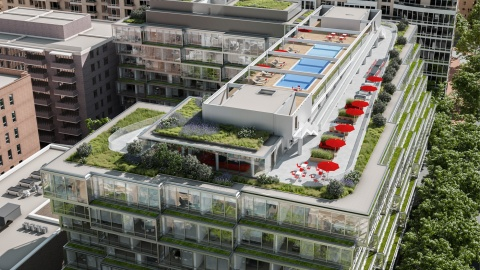 Living Greenery at Luxury Building