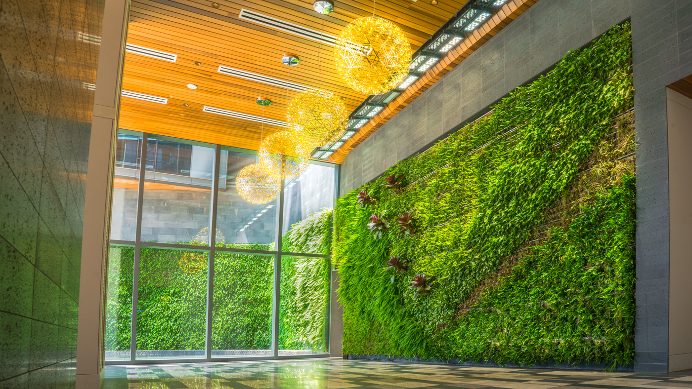Living Green Wall in Luxury Building