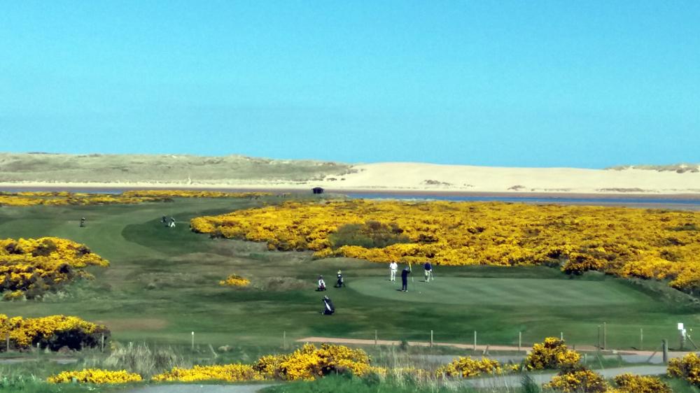 Newburgh-on-Ythan Golf Club