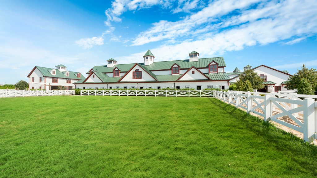 horse farm in the Hamptons