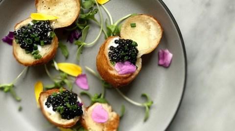 donut caviar waypoint