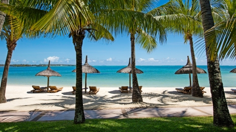 Mauritius luxury resort with palm trees