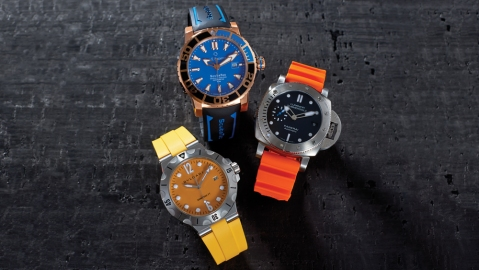 colorful watches
