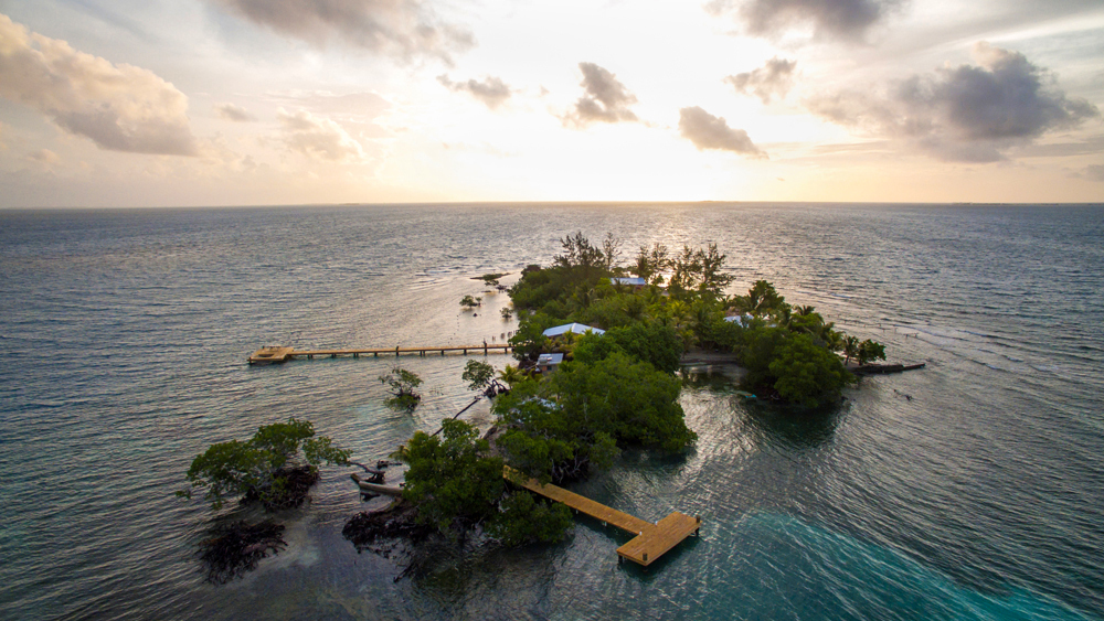 Coral Caye, Belize
