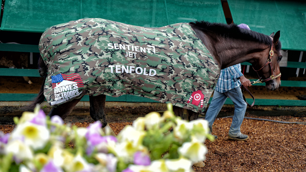 Tenfold Belmont Stakes