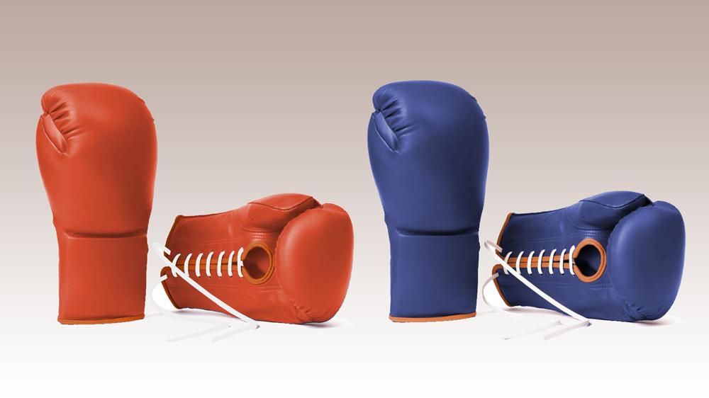 Hermès boxing gloves