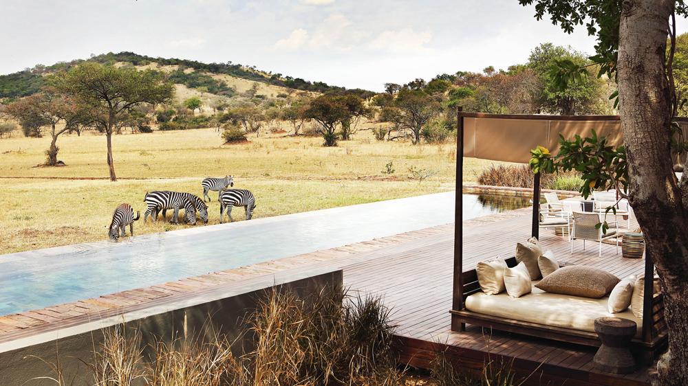 Singita Serengeti House zebras