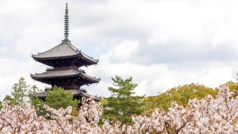 Inside Japan's Ninna-ji Temple Stay