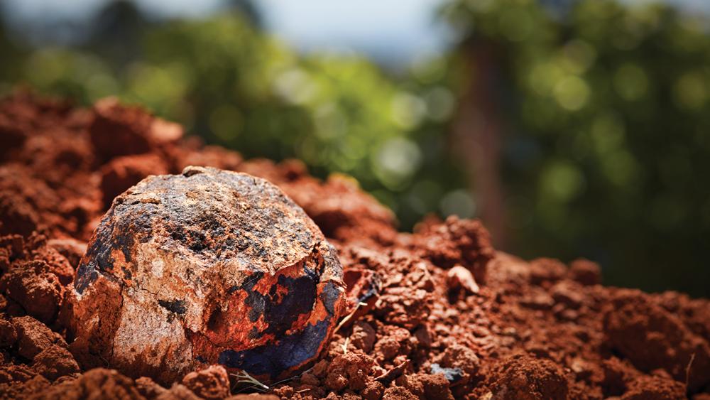 Domaine Joseph Drouhin Oregon soil