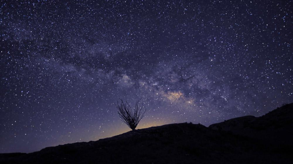 A starry night in the Anza-Borrego Desert.