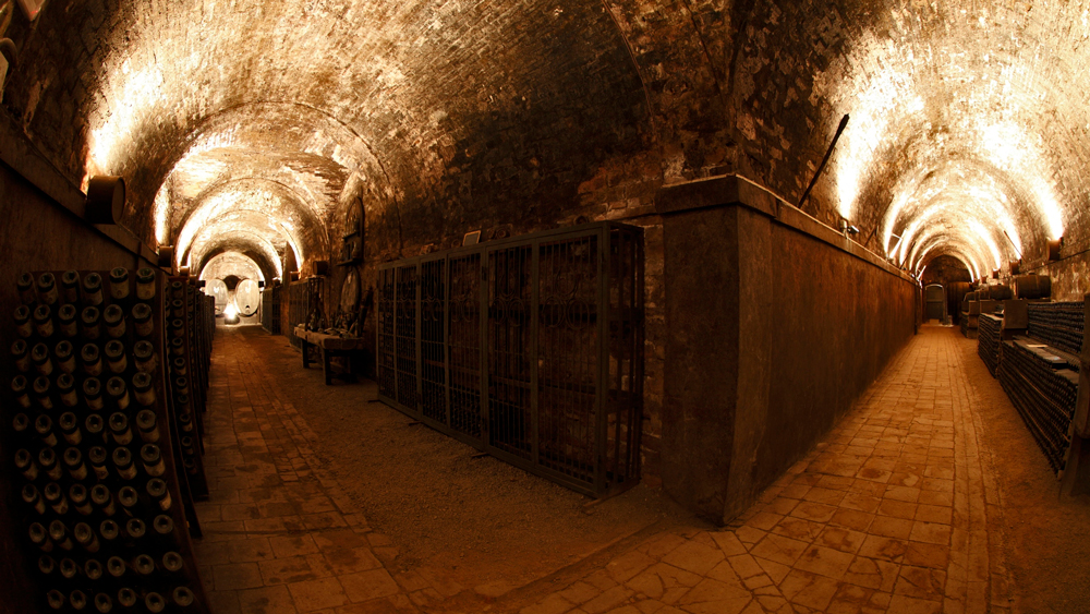 Wine Cellars at La Cusona
