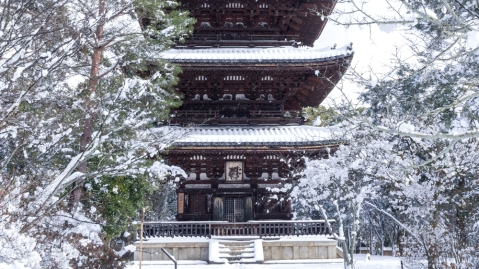 Ninna-ji Temple winter