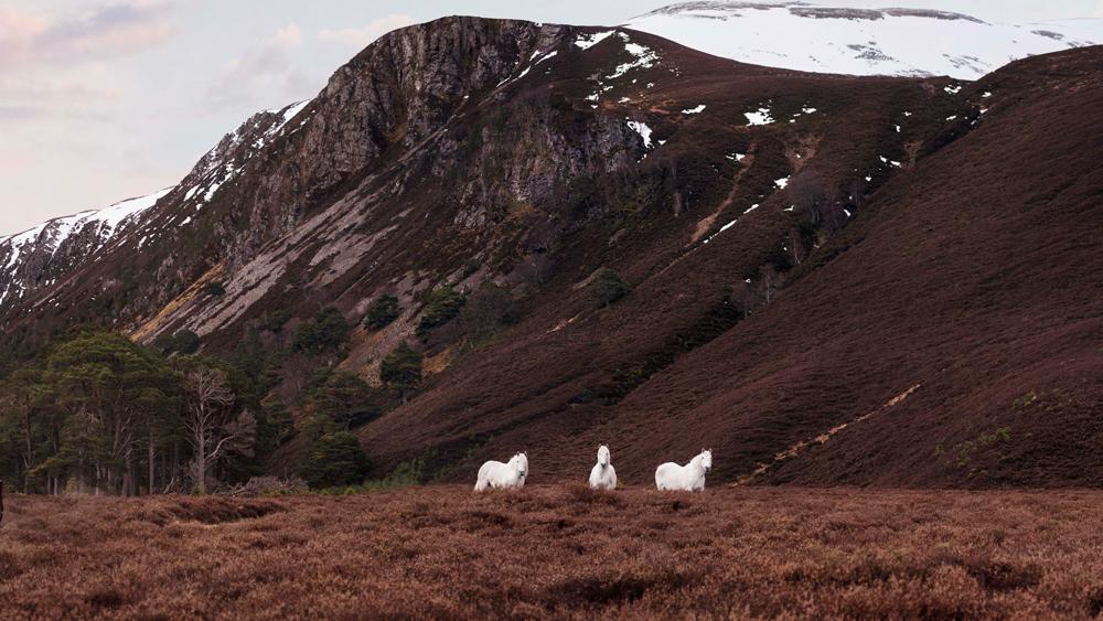 Extraordinary Adventure Club $325,000 Scotland Trip
