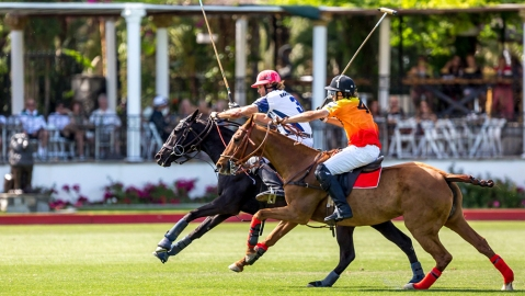 Waldorf Astoria Ultimate Polo Experience Weekend