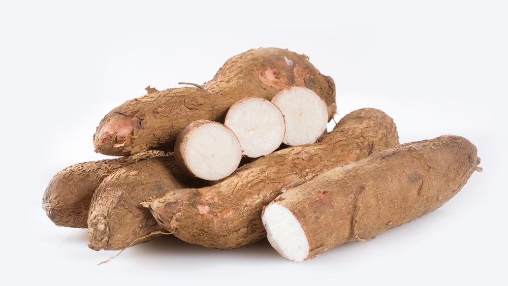 Cassava raw tuber