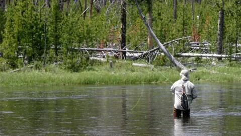 Flyfisherman, Yellowstone River, Yellowstone National Park, Wyoming, USA; Shutterstock ID 1216913503; Notes: fishing