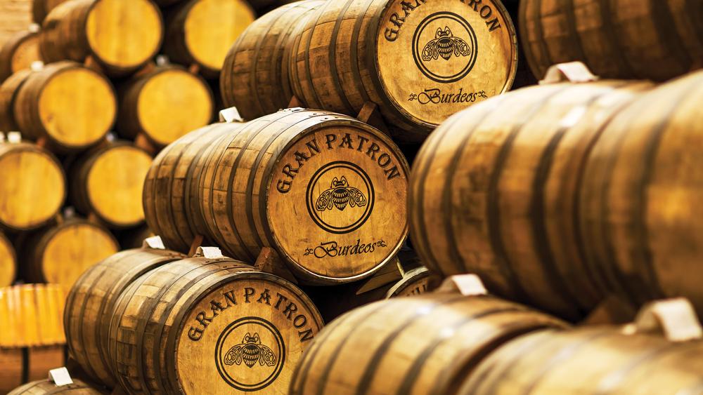 Barrels of Patrón Tequila