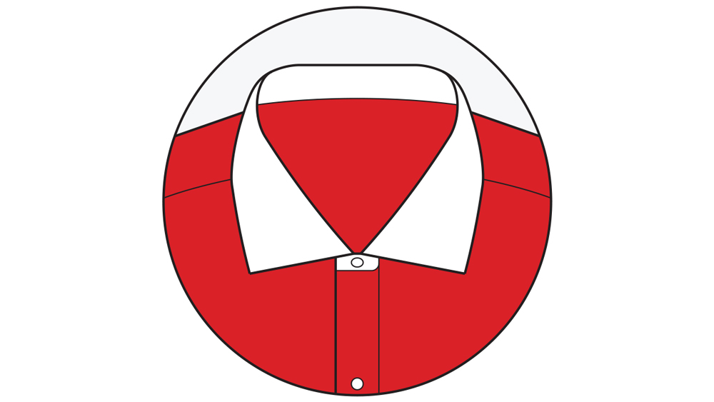 The Cutaway Collar