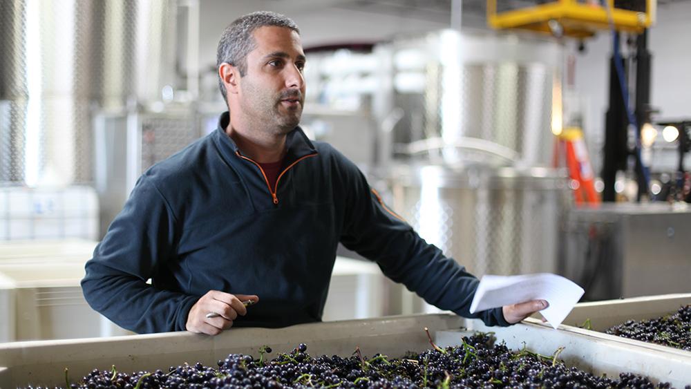 Jamie Kutch wines
