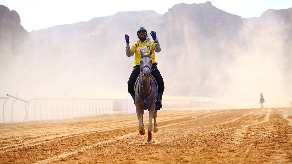 Saudi Arabia desert horserace endurance cup