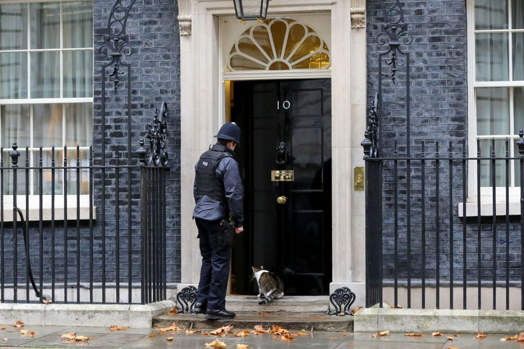 A police officer is seen letting Larry, the cat and Chief Mouser to the Cabinet Office inside No 10 Downing Street just before the Cabinet Ministers start arriving to attend the weekly Cabinet meeting.Cabinet meeting, London, UK - 20 Nov 2018