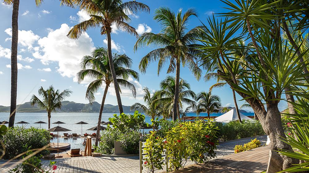 beach resort palm trees St Barts
