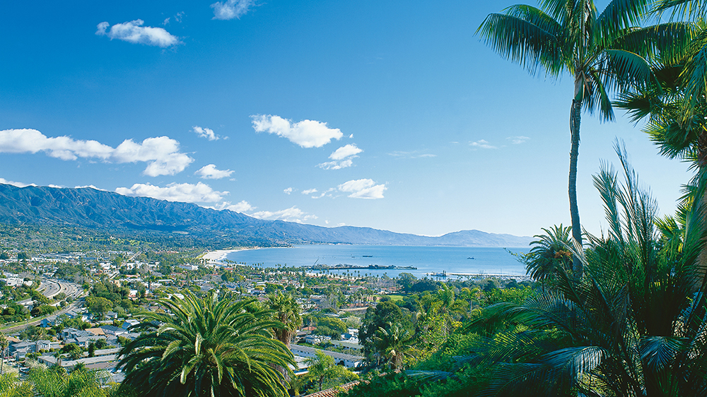 Santa Barbara coast palm trees ocean