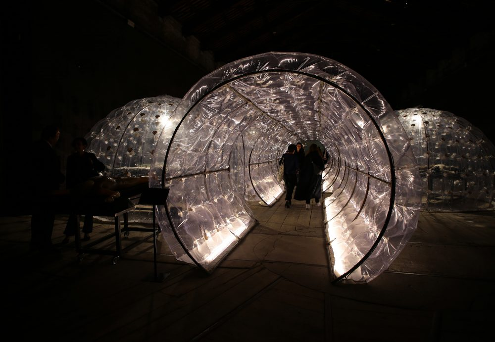 A 2017 Biennale exhibition.