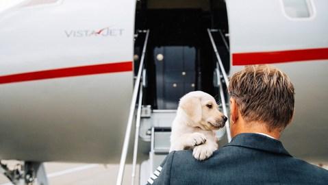VistaJet Pets